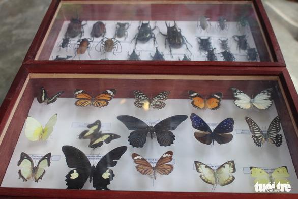 Đà Nẵng có trung tâm giáo dục trải nghiệm thiên nhiên đầu tiên cho trẻ - Ảnh 4.