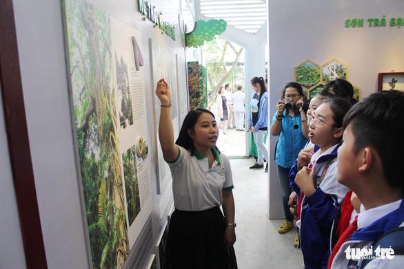 Đà Nẵng có trung tâm giáo dục trải nghiệm thiên nhiên đầu tiên cho trẻ - Ảnh 1.
