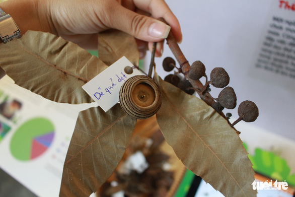 Đà Nẵng có trung tâm giáo dục trải nghiệm thiên nhiên đầu tiên cho trẻ - Ảnh 6.