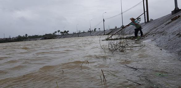 Phú Yên: Mưa lũ ngập đường, hàng ngàn hecta ruộng mất giống - Ảnh 4.