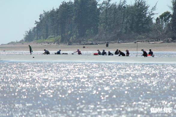 Gió chướng thổi cả cánh đồng ốc dạt vào bờ, dân đổ xô đi lượm - Ảnh 6.