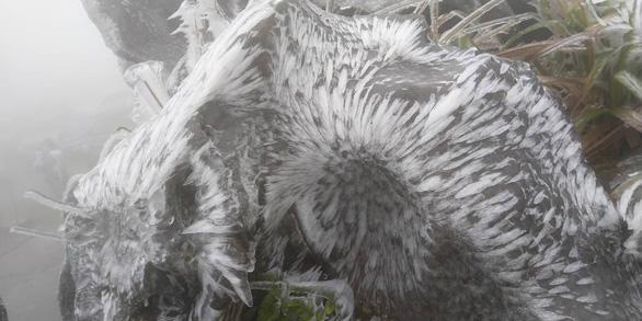 Băng tuyết phủ trắng Mẫu Sơn ngày cuối năm - Ảnh 2.