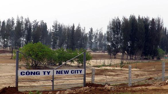Xem xét trách nhiệm lãnh đạo tỉnh vụ sai phạm đất rừng Phú Yên - Ảnh 2.