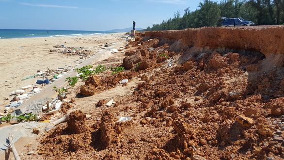 Hàng loạt sai phạm vụ kè biển Tam Quan 80 tỉ đổ sập - Ảnh 1.