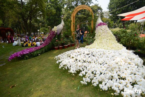Hội hoa xuân Tao Đàn đã mở cửa đợi khách thưởng hoa - Ảnh 10.