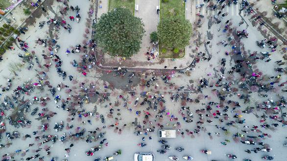 Dân Hà Nội đổ xô ra chợ hoa mua đào chơi Tết - Ảnh 11.