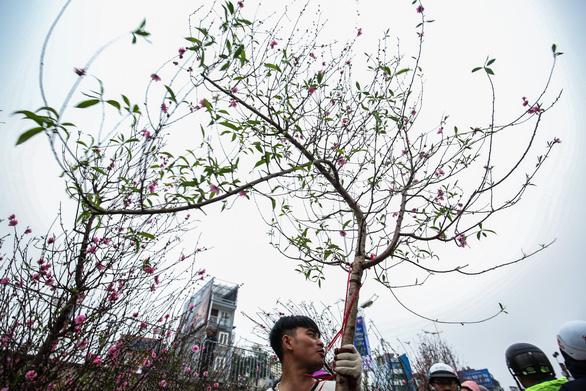 Dân Hà Nội đổ xô ra chợ hoa mua đào chơi Tết - Ảnh 5.