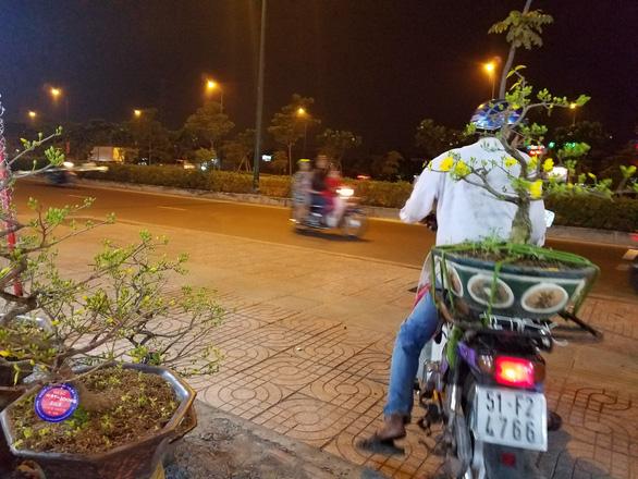 Dân Sài Gòn hối hả săn mai Tết tận khuya - Ảnh 8.