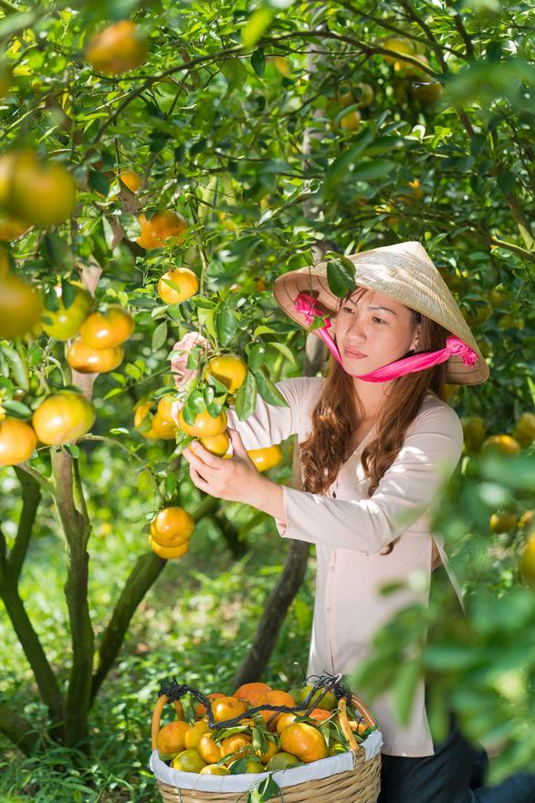 Ông Lê Minh Hoan: Hướng đến nền nông nghiệp thông minh - Ảnh 2.