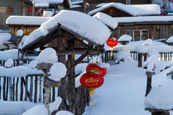 Ngôi làng tuyết trắng đẹp như trong cổ tích ở Cáp Nhĩ Tân - Ảnh 3.