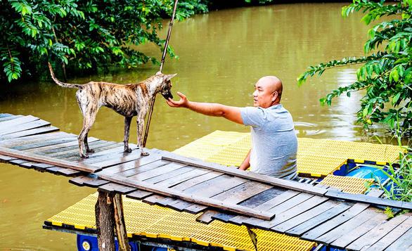 Đi tìm chuỗi gen đặc trưng của chó Phú Quốc - Ảnh 1.