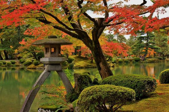 Đi Nhật Bản ngắm hoa anh đào ở đâu đẹp nhất? (phần 2) - Ảnh 2.