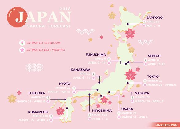 Đi Nhật Bản ngắm hoa anh đào ở đâu đẹp nhất? - Ảnh 1.