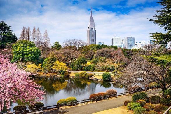Đi Nhật Bản ngắm hoa anh đào ở đâu đẹp nhất? - Ảnh 3.
