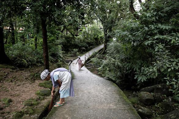 Đến Ấn Độ ngắm kiệt tác cầu từ rễ cây - Ảnh 7.