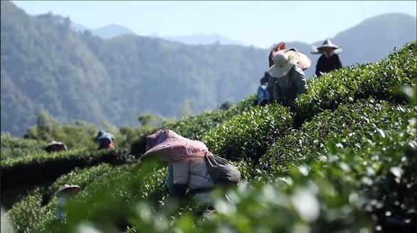 Miền đất hứa chuyện đau xót về người lao động Việt ở Đài Loan - Ảnh 3.