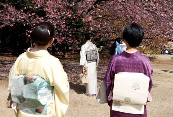 Rực rỡ mùa hoa anh đào Nhật Bản - Ảnh 4.