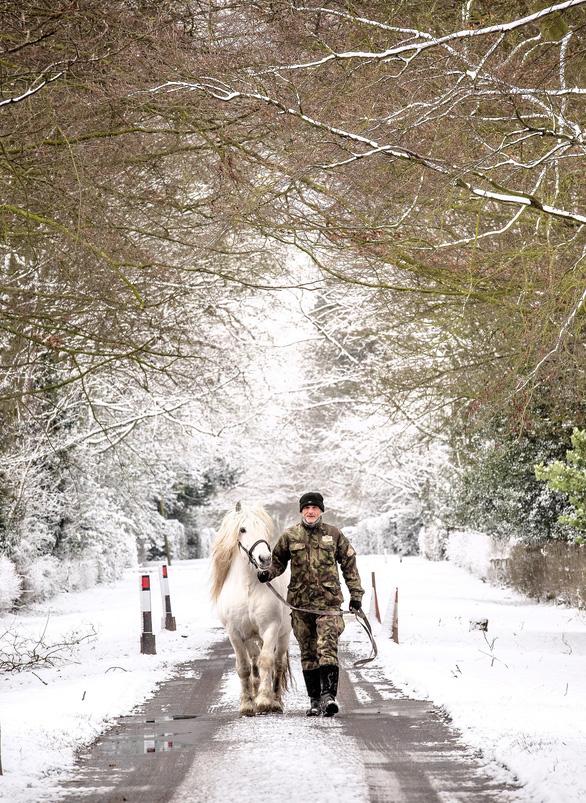 Tuyết rơi mùa xuân ở Anh - Ảnh 9.