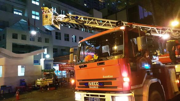 Cảnh sát cứu hỏa phá bốn tổ ong mật trên cây cao trong đêm - Ảnh 3.