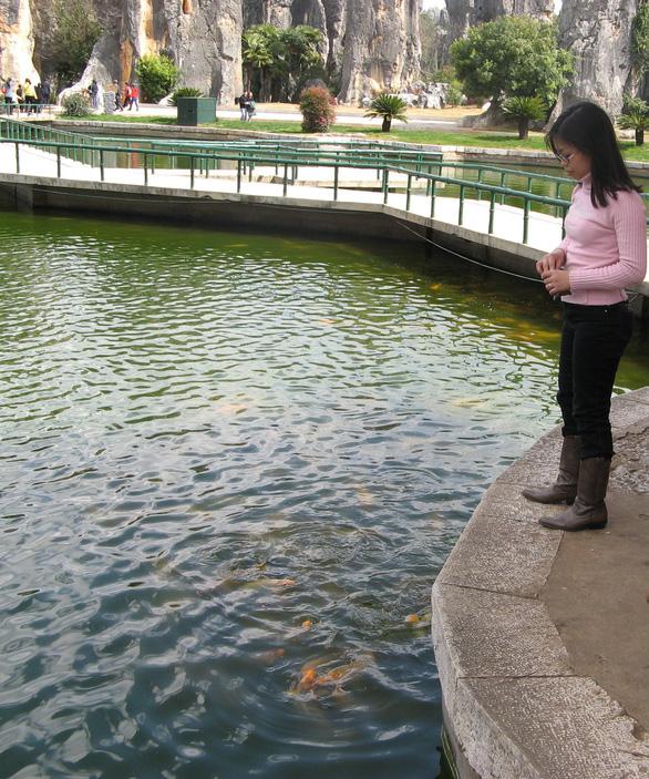 Côn Minh: Thành phố của hoa và đá - Ảnh 2.