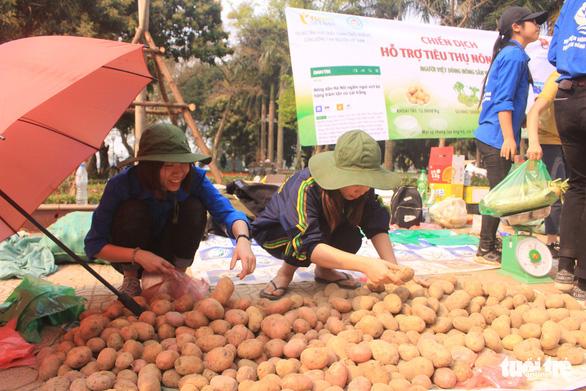 Giá giải cứu khoai tây: 12.000 đồng/kg, su hào: 3.000, củ cải: 4.500 - Ảnh 3.