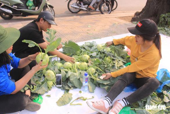 Giá giải cứu khoai tây: 12.000 đồng/kg, su hào: 3.000, củ cải: 4.500 - Ảnh 4.