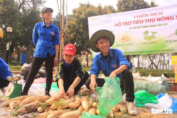 Giá giải cứu khoai tây: 12.000 đồng/kg, su hào: 3.000, củ cải: 4.500 - Ảnh 1.