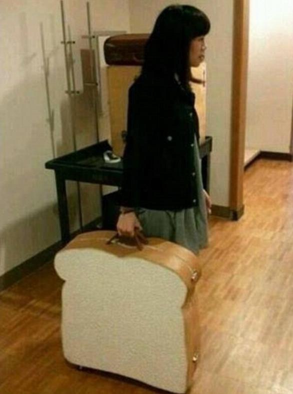 Loạt ảnh ngộ nghĩnh về vali du lịch - Ảnh 2.