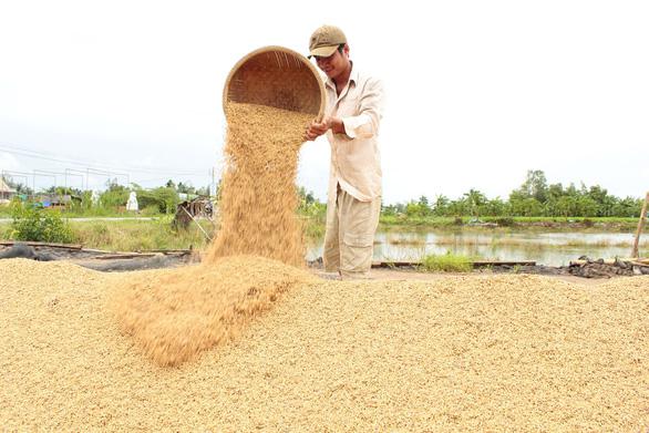 """Giữ """"bồ lúa"""" miền Tây phát triển - Ảnh 1."""