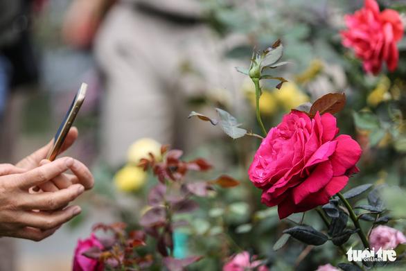 Lễ hội hoa hồng Bulgaria sửa sai, người dân được đền bù - Ảnh 2.