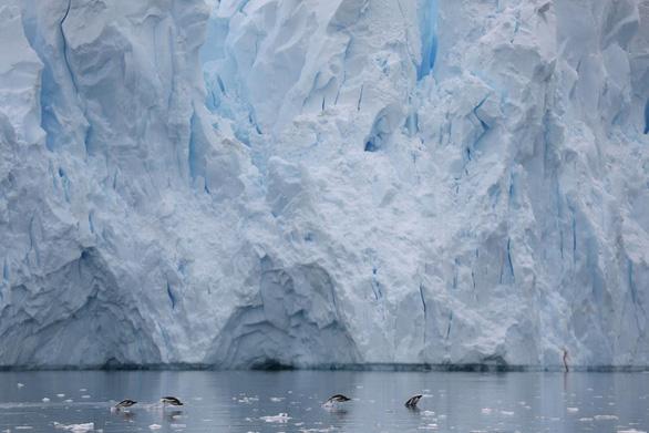 Ngắm vẻ đẹp băng giá và chim cánh cụt ở Nam cực - Ảnh 17.