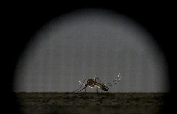 Máy phát hiện muỗi từ xa 2km - Ảnh 1.