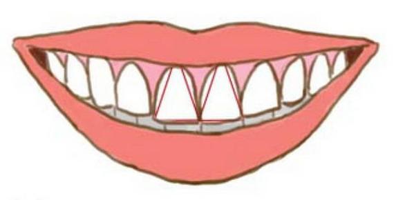 Nhìn răng biết tính cách? - Ảnh 4.