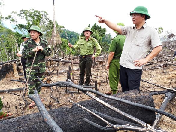 Xót rừng bị phá, nửa đêm phó chủ tịch tỉnh viết tâm thư gửi kiểm lâm - Ảnh 1.