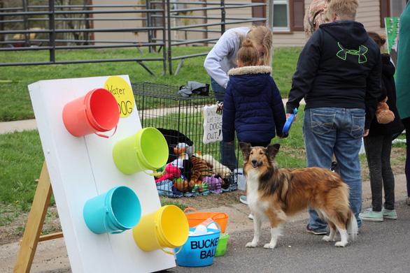 Độc đáo lễ hội tôn vinh chú chó nổi tiếng Old Drum - Ảnh 5.