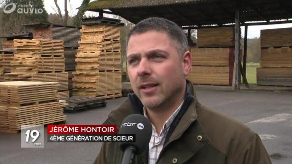 Trung Quốc mua gom gỗ, thợ Bỉ chết điếng vì mất việc - Ảnh 2.