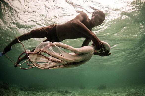 Người bơi lặn như rái là có thật? - Ảnh 8.