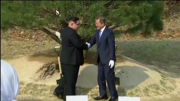 Cây hòa bình gieo xuống, tương lai Triều Tiên bay lên - Ảnh 1.