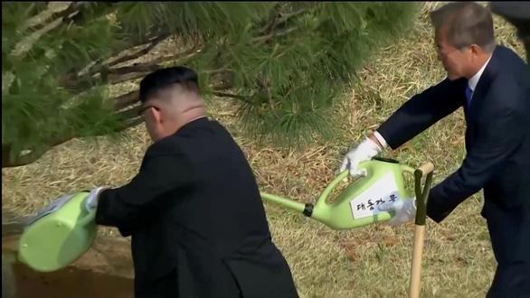 Cây hòa bình gieo xuống, tương lai Triều Tiên bay lên - Ảnh 3.