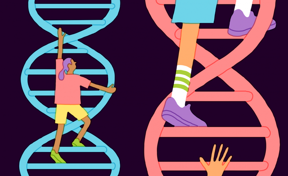Vì sao không nên kiểm tra IQ bằng xét nghiệm gene - Ảnh 1.
