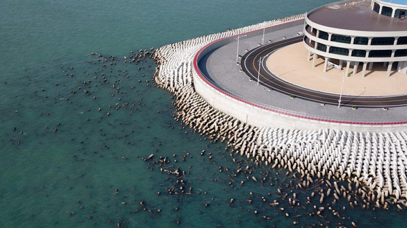 Chuyên gia Hong Kong la làng về chất lượng cầu vượt biển Trung Quốc  - Ảnh 1.