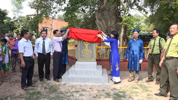 An Giang: 3 cây bằng lăng hơn 300 tuổi thành Cây di sản Việt Nam - Ảnh 1.