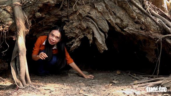 An Giang: 3 cây bằng lăng hơn 300 tuổi thành Cây di sản Việt Nam - Ảnh 3.