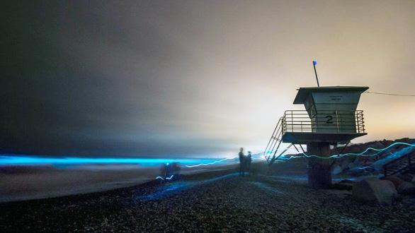 Đi canh sóng biển ma quái phát sáng trong đêm - Ảnh 1.