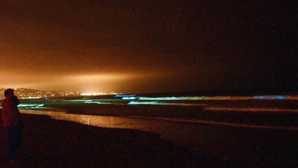 Đi canh sóng biển ma quái phát sáng trong đêm - Ảnh 3.