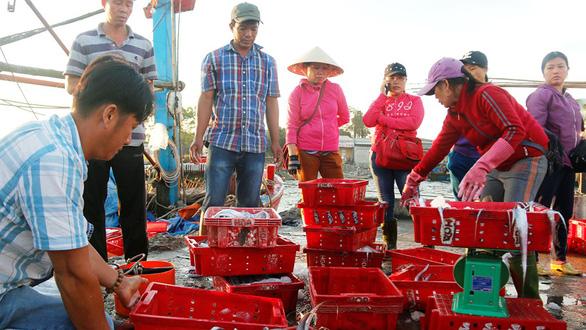 Biển đã sạch sau sự cố Formosa, ngư dân vẫn còn lo - Ảnh 3.