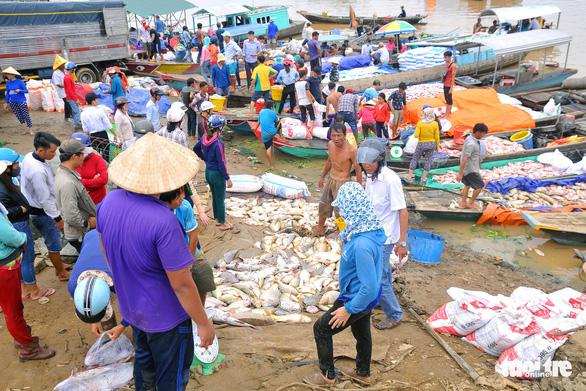 Hàng trăm tấn cá chết trắng bè, dân La Ngà khóc ròng - Ảnh 3.