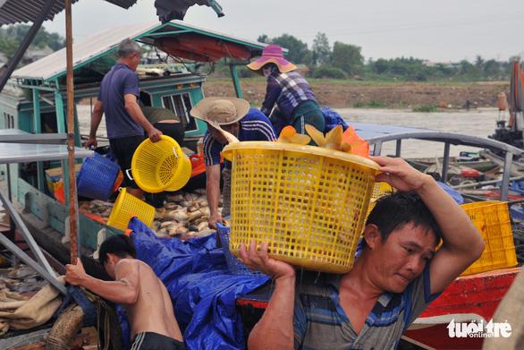 Hàng trăm tấn cá chết trắng bè, dân La Ngà khóc ròng - Ảnh 7.