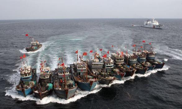 Việt - Trung thiết lập đường dây nóng về hoạt động nghề cá trên biển - Ảnh 1.