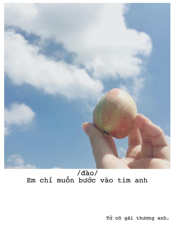 Bộ ảnh thả thính bằng trái cây của cô gái Sài Gòn - Ảnh 6.